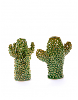 CACTUS MINI 12,5x5 H12+9x9 H12 ASS/2